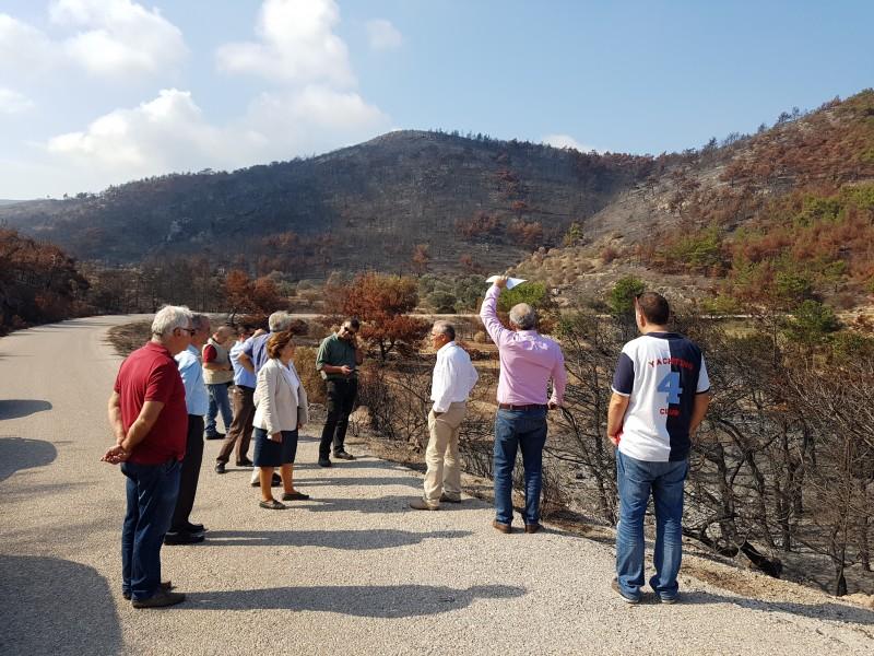 πυρόπληκτες περιοχές της Χίου η Χριστιάνα Καλογήρου